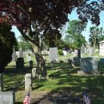 Canarsie Cemetery Shady Spot